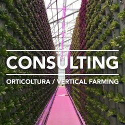 consulenza tecnica per orticoltura e svil technical consulting service for horticulture and indoor vertical farming projects